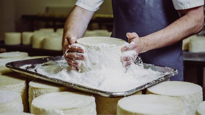 Shepherds Purse Cheese Salting